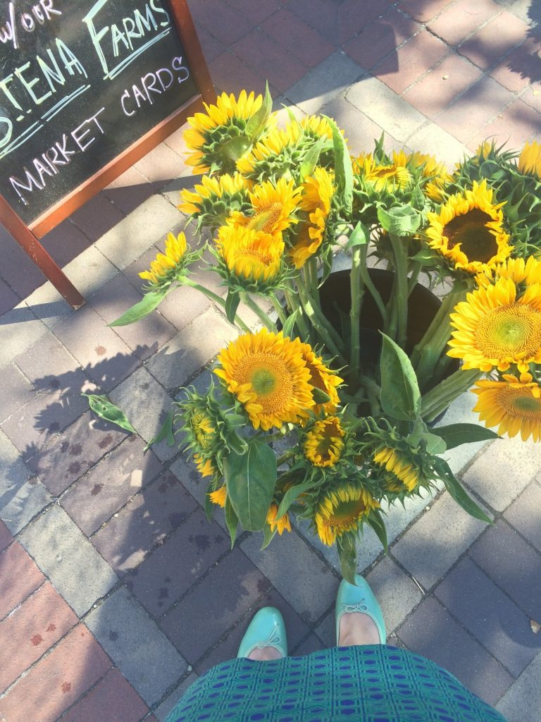 Sunflowers at Copley Square market
