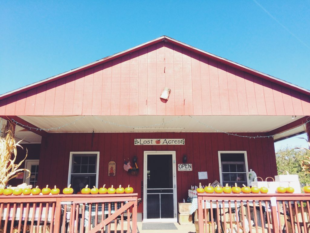 Best farms and restaurants Granby: Lost Acres Orchard