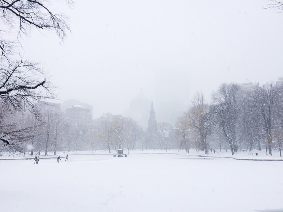 Surviving winter: a guide for first timers