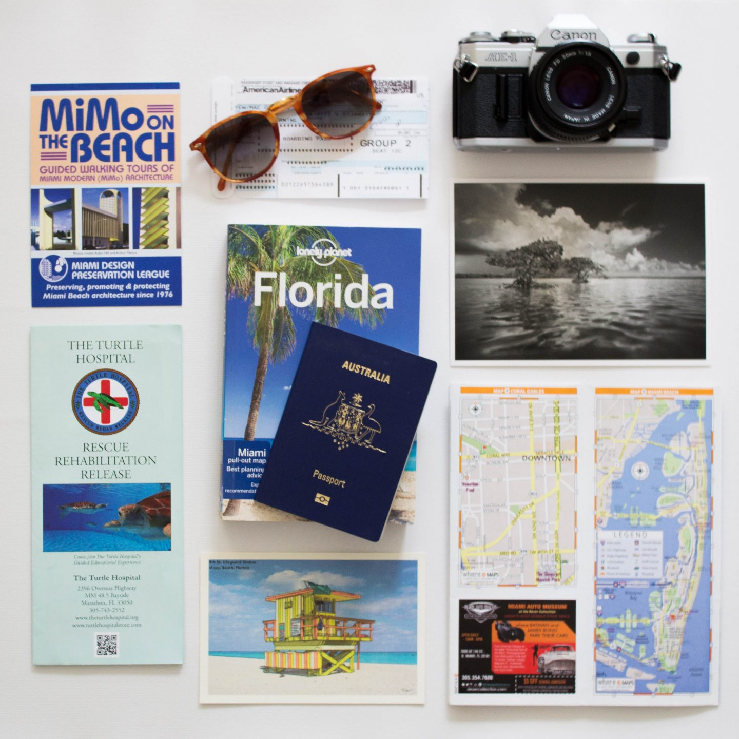 Must have experiences Everglades