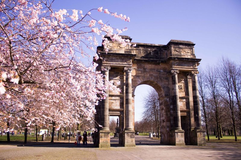 Glasgow on a budget - cherry blossoms
