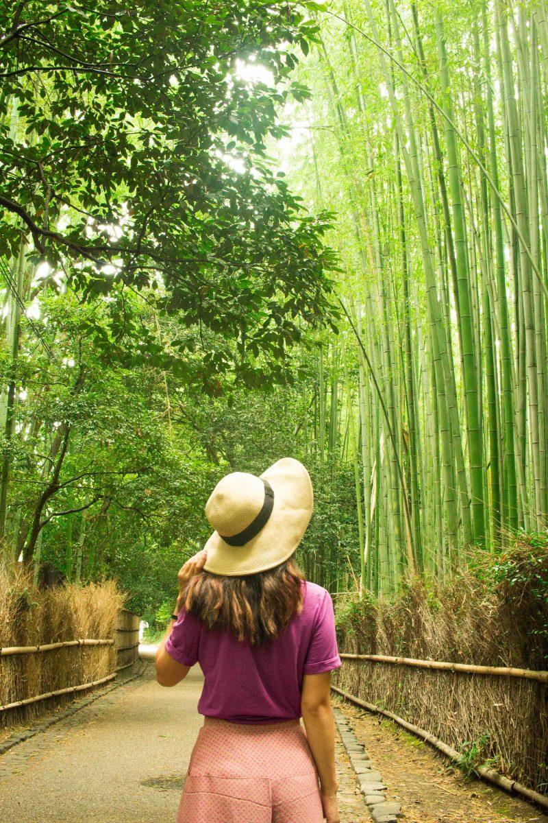 travel in Japan as an English speaker 2