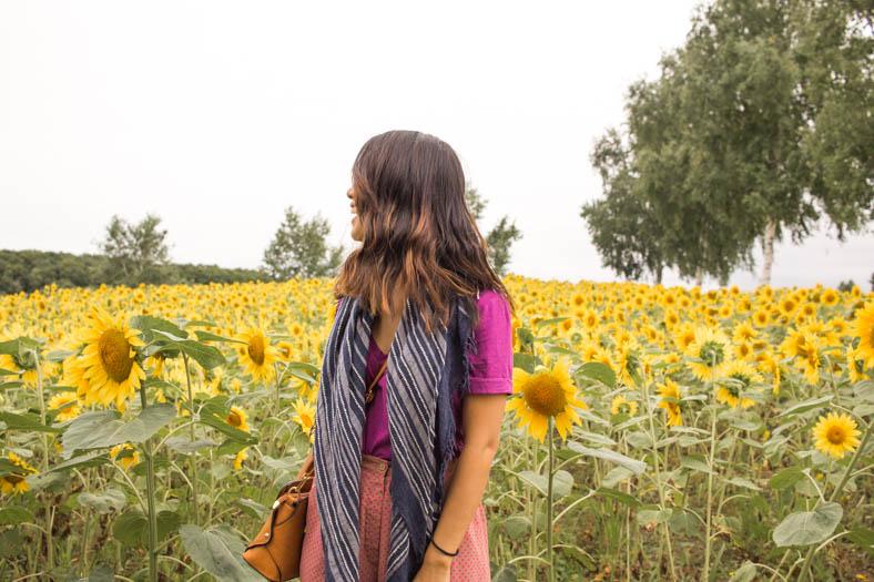 off the beaten path in Japan - Hokkaido Sunflower Fields