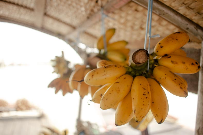 Mekong delta private tour - bananas