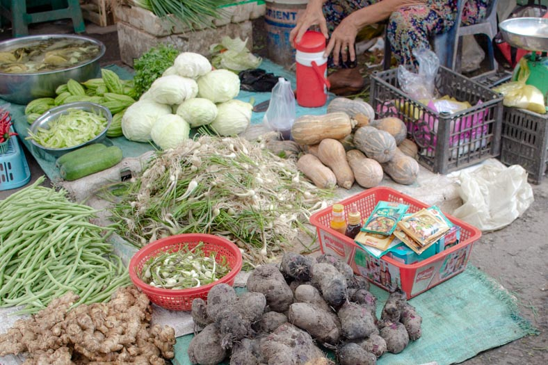 Mekong delta private tour - cai be market
