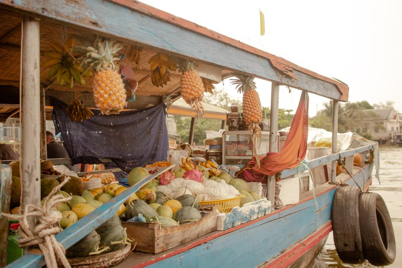 Mekong delta private tour - floating market fruit