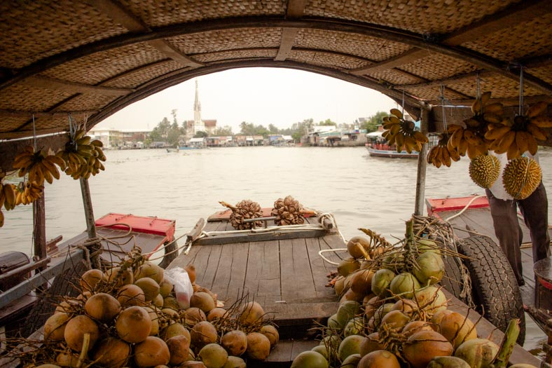 Mekong delta private tour - fruit boat