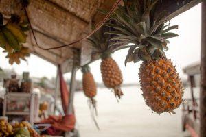responsible travel in vietnam - mekong delta pineapples
