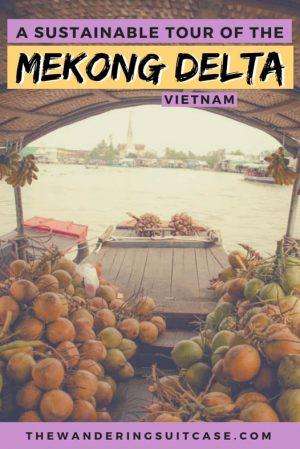 Mekong delta private tour - pinterest