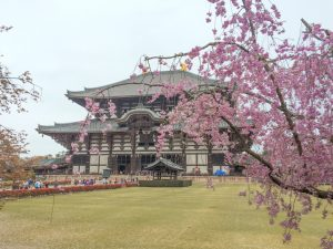 Nara itinerary - Todai-ji