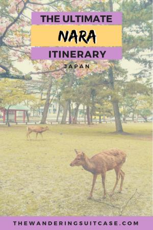 Nara itinerary - PINTEREST