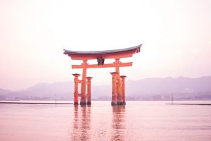 things to know before going to Japan - miyajima