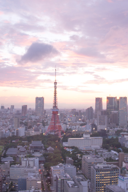 things to know before going to Japan - tokyo skyline