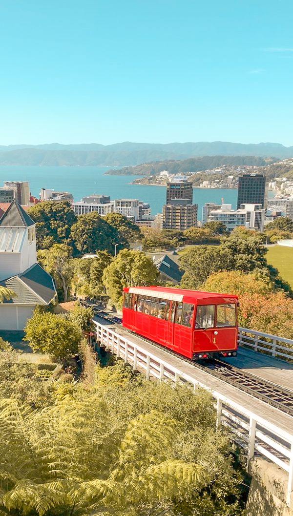 New Zealand on a budget - wellington