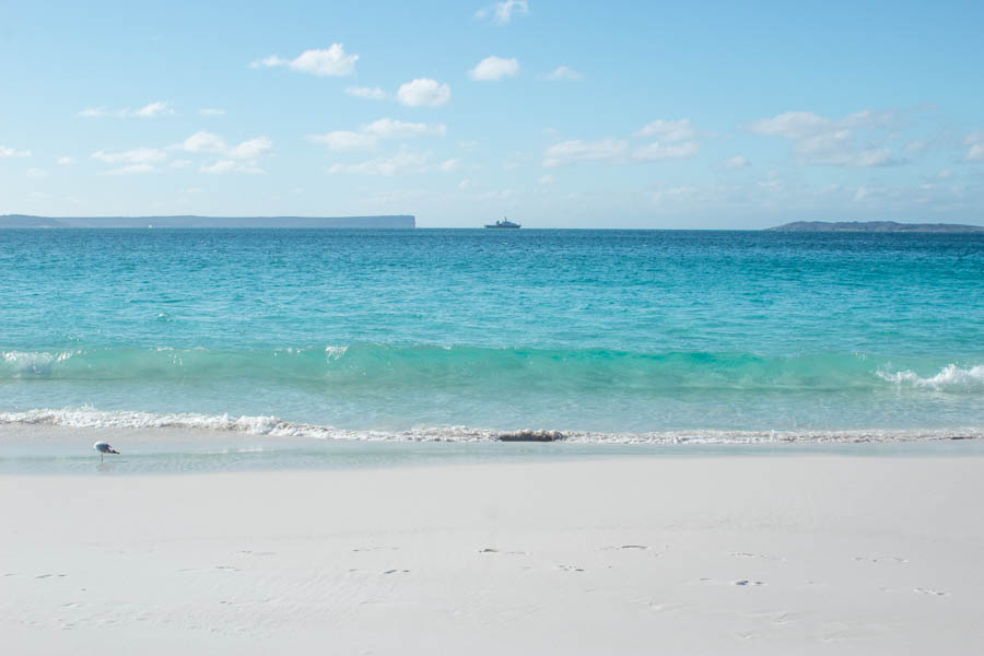 Things to do in Jervis Bay in Winter - Hyams Beach waves