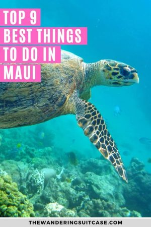 Things to do in Maui - pinterest 2