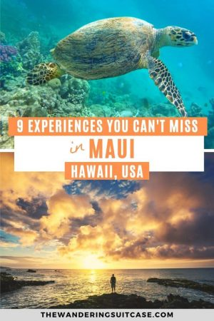 Things to do in Maui - pinterest
