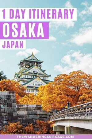 1 day in Osaka pinterest image