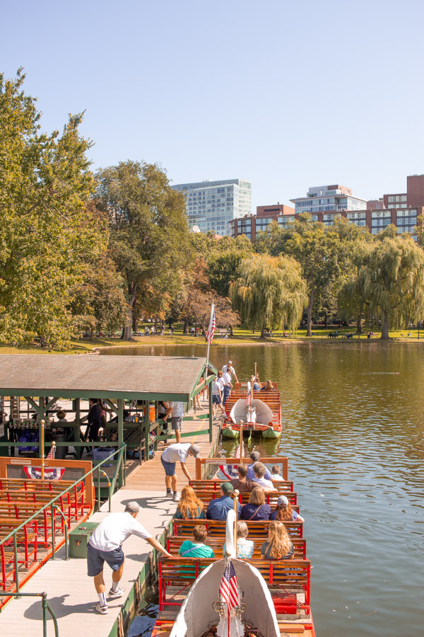 Swan Boats - Boston Public Gardens
