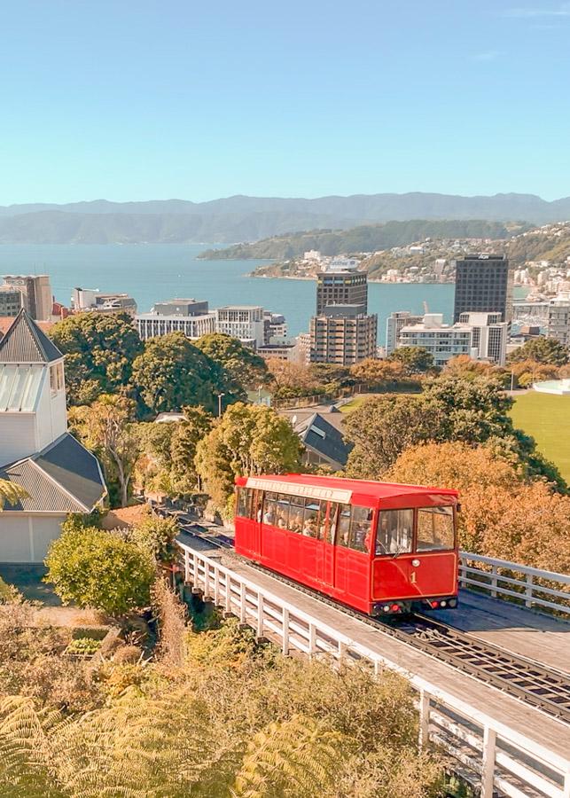 New Zealand North island itinerary - Wellington