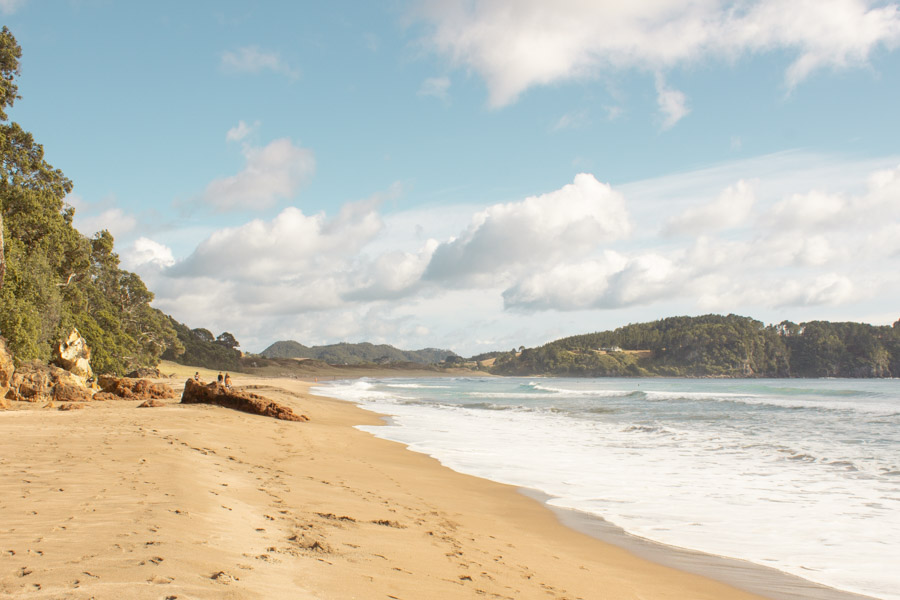 View from hot water sand beach on the Coromandel Peninsula
