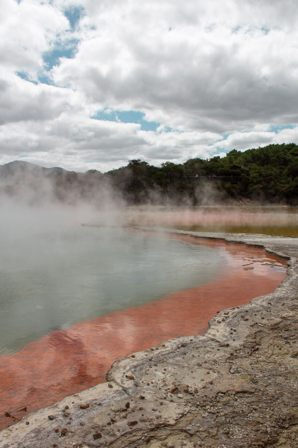 Hot pool in wai-o-tapu, Rotorua a must have on your New Zealand bucket list