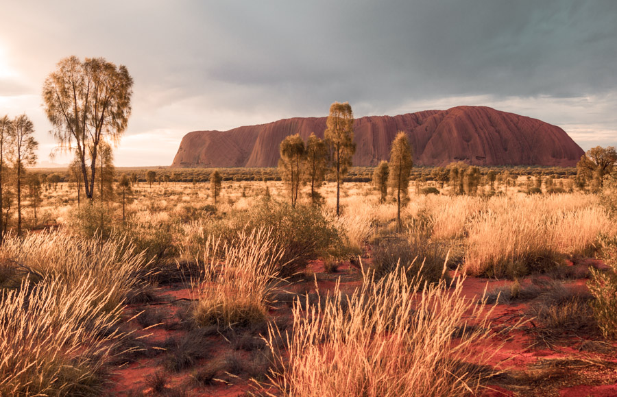 exploring outdoors from inside - uluru