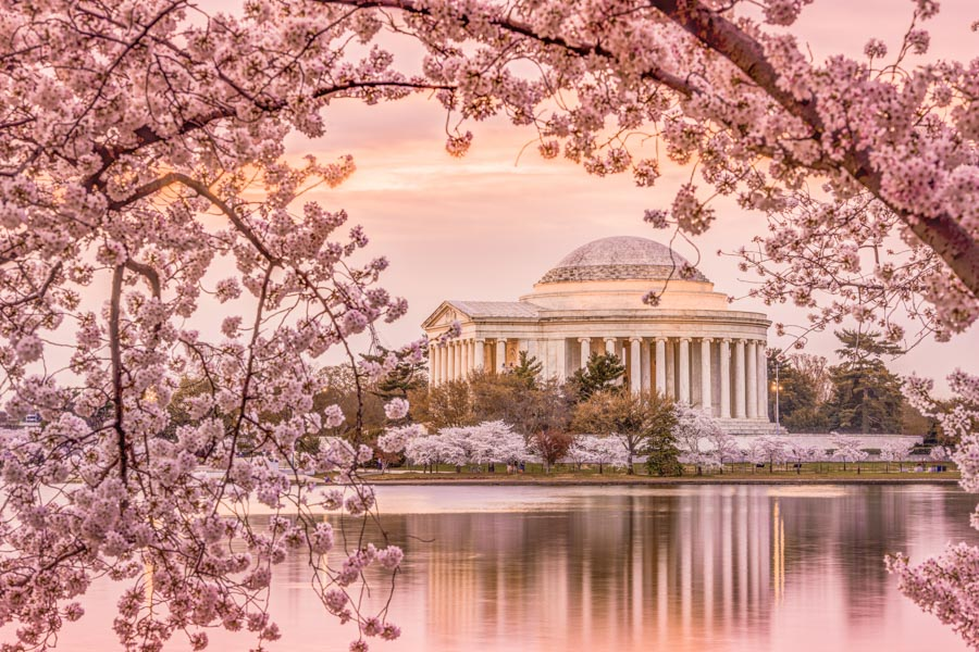 Jefferson Memorial in Spring, Washington DC